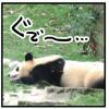 中国秘境紀行—大陸の果てまでいっチャイナ!—