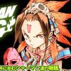 SHAMAN KING KC完結版